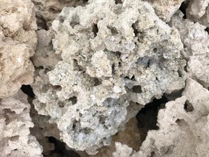 Cleaned Dry Reef Rock per pound